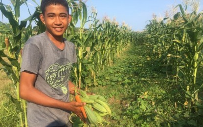 Ilocos coop gets P5-M grant to boost marketing of agri-products