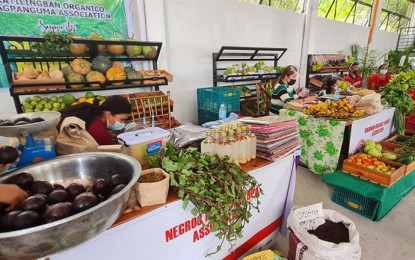NegOcc pioneers 'slow food travel' model in PH