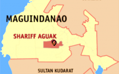 Army pounds anew BIFF in Maguindanao