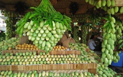 2.5 tons of Guimaras mangoes ready for Manila, QC clients