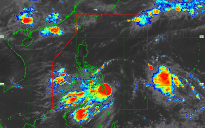 Over 1.7K stranded in ports due to TS Dante