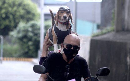 US bans import of dogs from PH, other countries