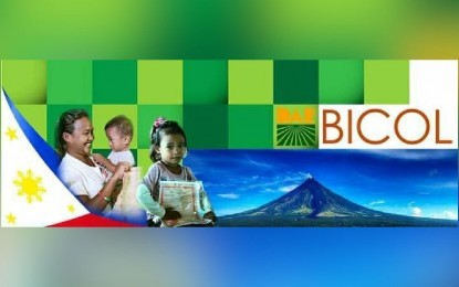 DAR to hire 126 Bicolanos for various posts