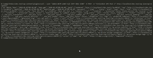 Terminal Rest API request output.