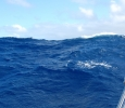 Vågorna var enorma