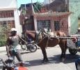 En vanlig transport