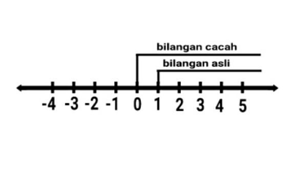 Pengertian bilangan cacah beserta contohnya