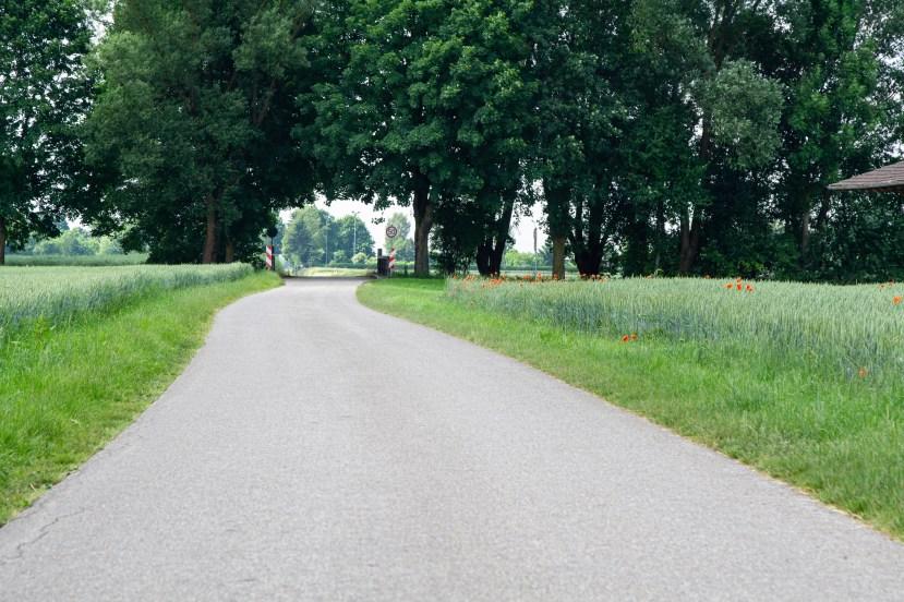Schöne Wege abseits des Verkehrs
