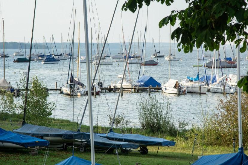 Am See hielt sich das Mückenproblem in Grenzen