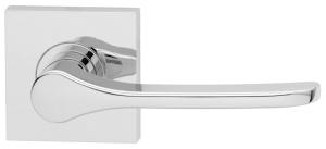 Saltbush (Square) Image