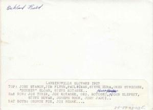 88-89-3-3L identifications back