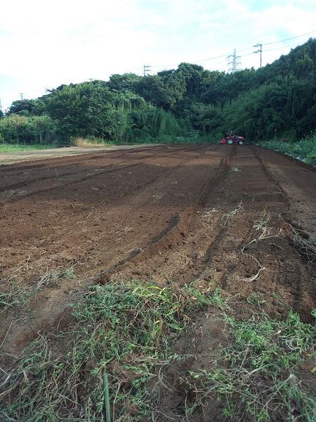 整地した畑