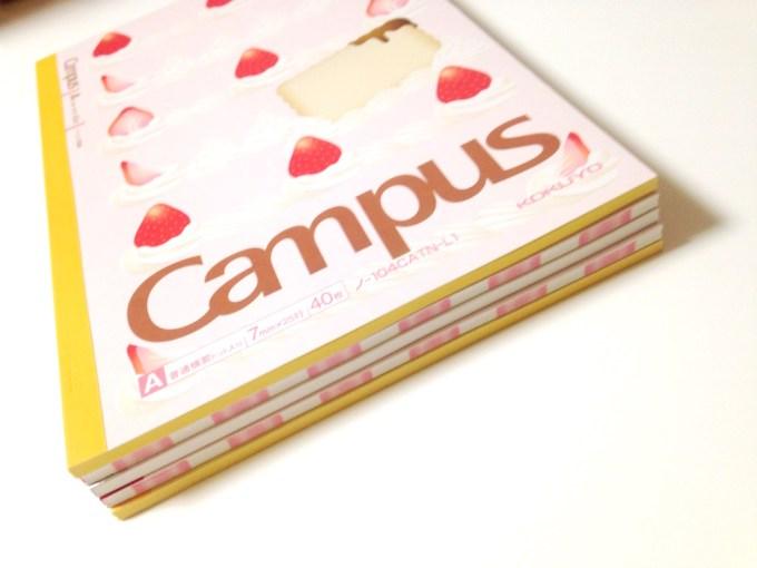 cake-campas_7