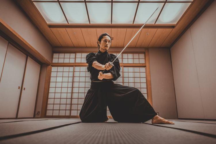kyoto samurai show