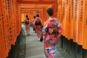 Fushimi Inari 1,000 gates