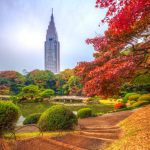 The Most Romantic Honeymoon Experience in Tokyo