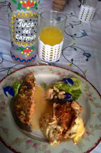 My plate posing with Ross's lovely hand-painted water bottles and my glass of freshly squeezed dalandan juice.