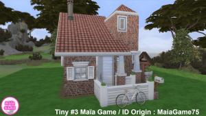 Tiny House #3