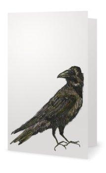 Crow: Corvus brachyrhynchos