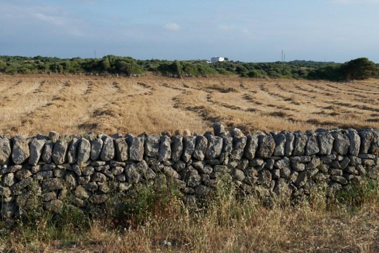 Murs sèches