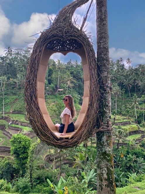 Le risaie di Ubud Bali