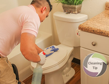 How to Clean a Toilet. clean toilet