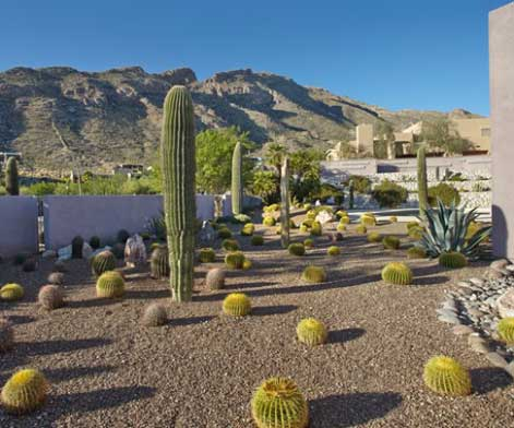 The Zen of Clean: House cleaning service in Catalina Foothills