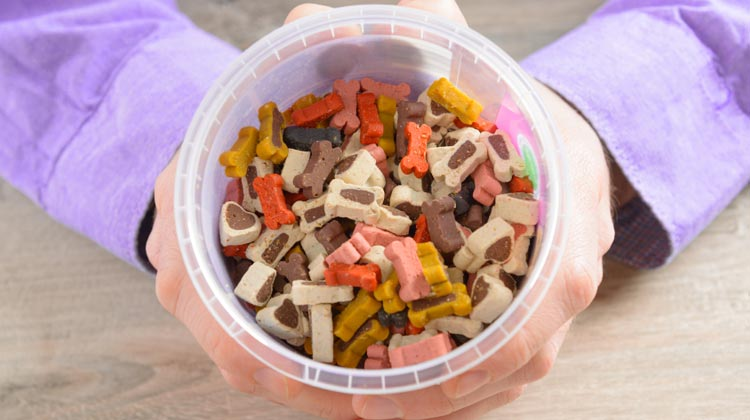 Dog Gear container for dog treats