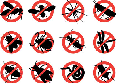 Home Pest Prevention Checklist