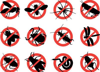 Home Pest Prevention Checklist