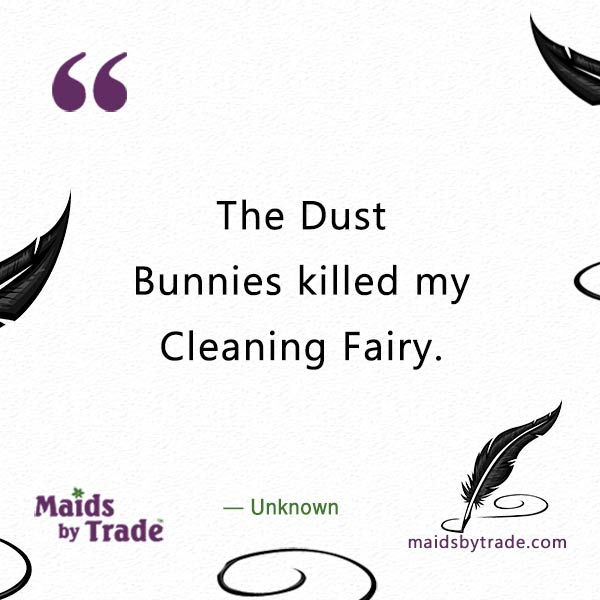 sobbing-while-dusting-House Cleaning Fairy-House Cleaning Fairy- House Cleaning quotes-