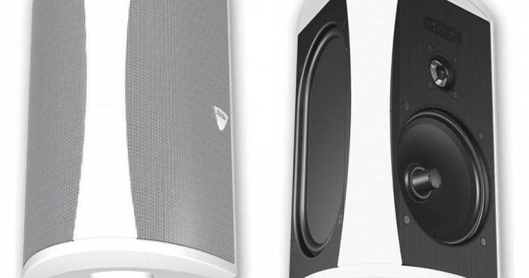 Definitive Technology AW 6500 outdoor speakers