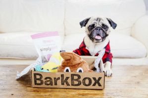 barkbox subscription box- ship international