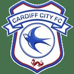 Cardiff Team