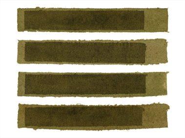Ripton 13 Damir Porobic  Grass All Return Project  Archival Pigment Print 33X44 2014 copy