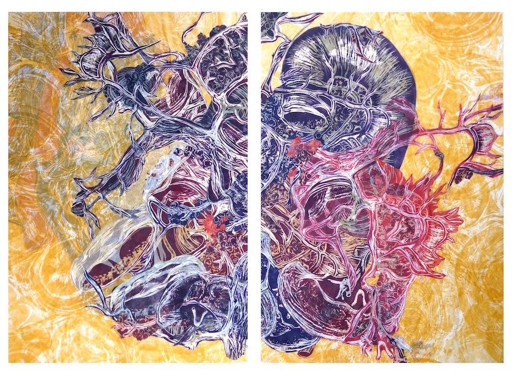 Plesch 5 Anatomica ruptis copy