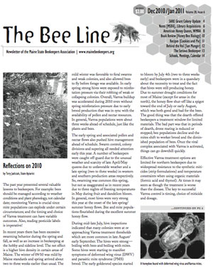 The Bee Line - December 2010 Issue