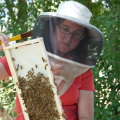 Dr. Deborah Delaney Assistant Professor Entomology & Wildlife Ecology University of Delaware