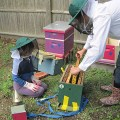 Jodi Moger and daughter transfer a nucleus colony to their new home, May 2010.