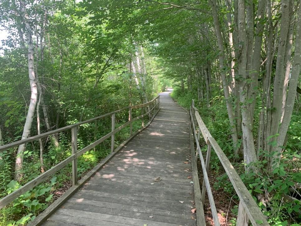 corinna-boardwalk1-1