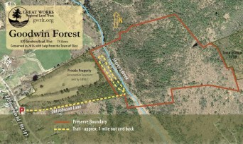 Goodwin map