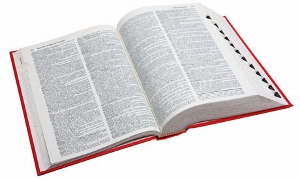 Dictionary-007 (300x180)