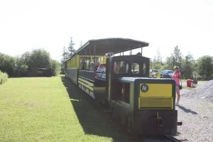 All aboard the Tooterville Trolley.