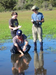 York students Patty McMurray, Andrew Fitzgerald and Todd Brockelman (left to right) gather water quality data in a freshwater channel of the Pantanal.
