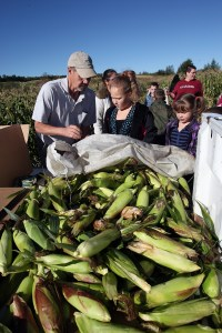 Dale Flewelling of the Friends of Aroostook initiative, goes over some of the ears of corn collected by Houlton Elementary students Tabria Flewelling and Launa Jay.