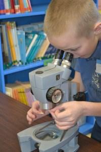 Fourth grade student Colin Trudelle uses a microscope to study fiber investigation.