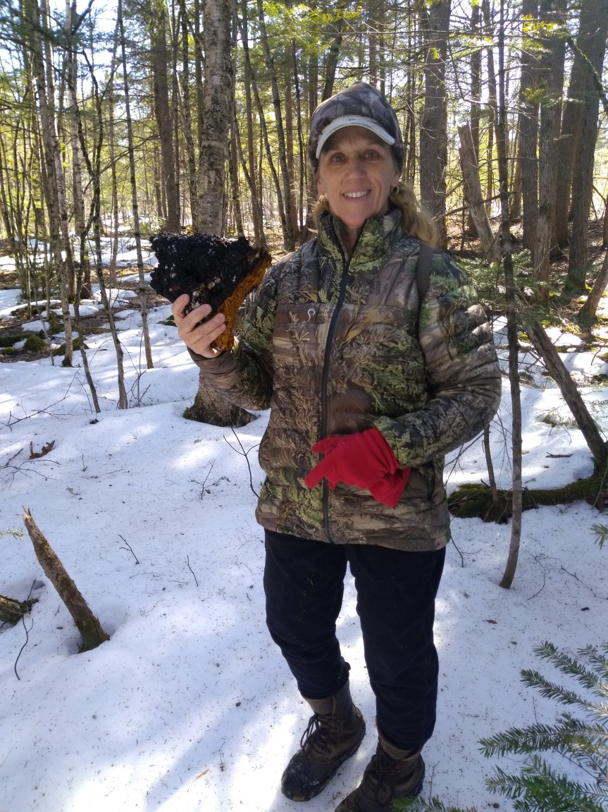 Get to know the Maine DOE Team: Meet Staci Warren