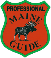 Maine Bear Hunting Guides