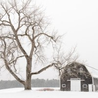Homey Things To Do In Maine This Winter