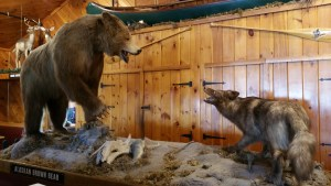 Inside the Clambake Restaurant features realistic Maine animals such as the brown bear and coyote.